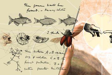 1859. El origen de las especies